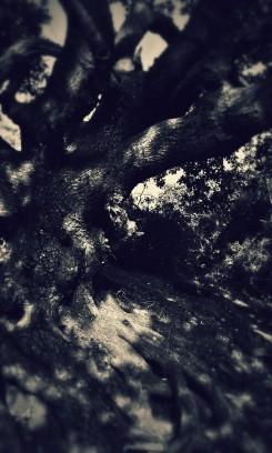 20151011_144613-2
